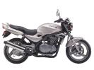 Kawasaki ER 5_1